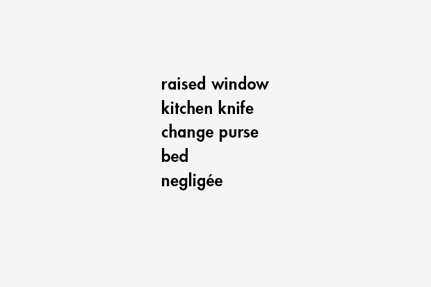 raised window / kitchen knife / change purse / bed / negligée