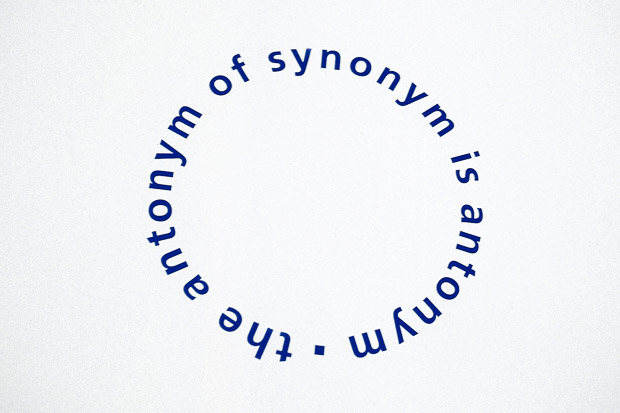 the antonym of synonym is antonym